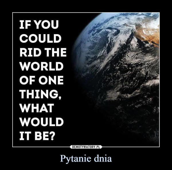 Pytanie dnia –