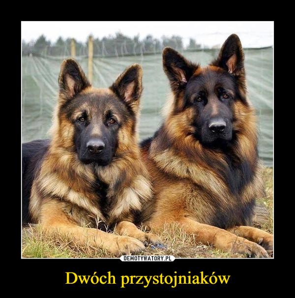 Dwóch przystojniaków –