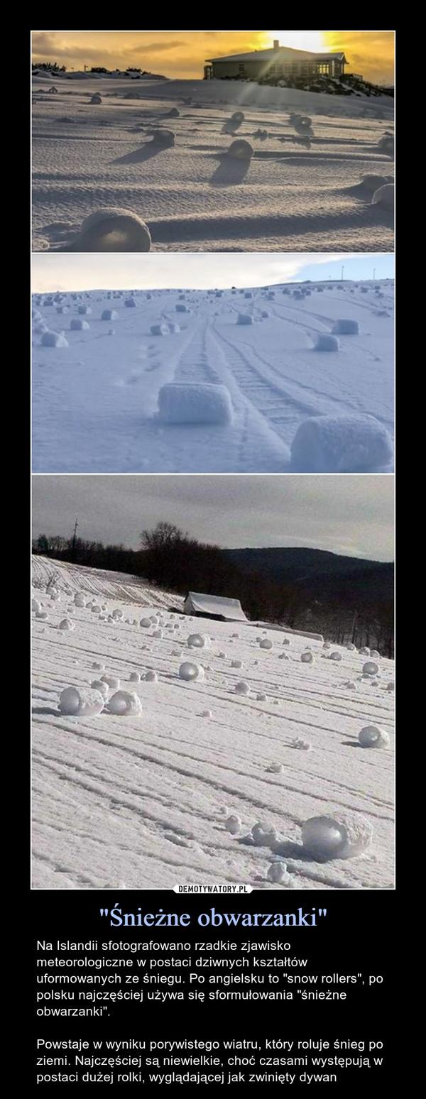 """""""Śnieżne obwarzanki"""" – Na Islandii sfotografowano rzadkie zjawisko meteorologiczne w postaci dziwnych kształtów uformowanych ze śniegu. Po angielsku to """"snow rollers"""", po polsku najczęściej używa się sformułowania """"śnieżne obwarzanki"""".Powstaje w wyniku porywistego wiatru, który roluje śnieg po ziemi. Najczęściej są niewielkie, choć czasami występują w postaci dużej rolki, wyglądającej jak zwinięty dywan"""