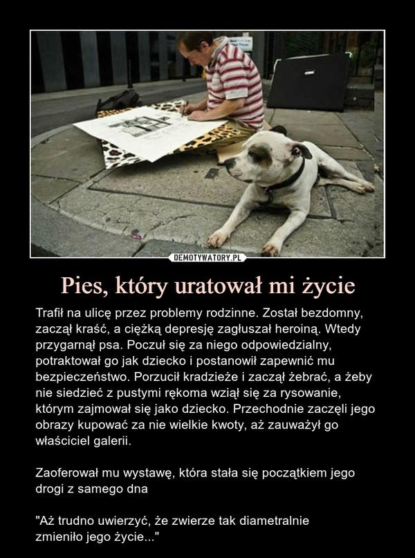 """Pies, który uratował mi życie – Trafił na ulicę przez problemy rodzinne. Został bezdomny, zaczął kraść, a ciężką depresję zagłuszał heroiną. Wtedy przygarnął psa. Poczuł się za niego odpowiedzialny, potraktował go jak dziecko i postanowił zapewnić mu bezpieczeństwo. Porzucił kradzieże i zaczął żebrać, a żeby nie siedzieć z pustymi rękoma wziął się za rysowanie, którym zajmował się jako dziecko. Przechodnie zaczęli jego obrazy kupować za nie wielkie kwoty, aż zauważył go właściciel galerii. Zaoferował mu wystawę, która stała się początkiem jego drogi z samego dna""""Aż trudno uwierzyć, że zwierze tak diametralniezmieniło jego życie..."""""""