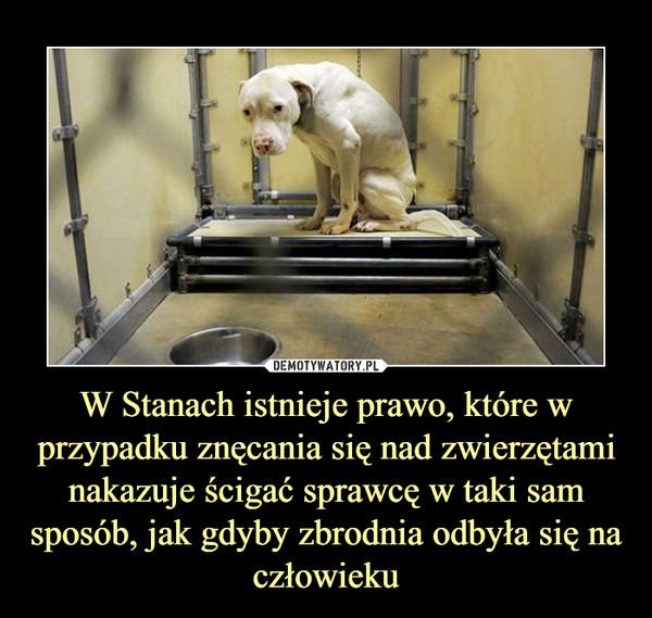 W Stanach istnieje prawo, które w przypadku znęcania się nad zwierzętami nakazuje ścigać sprawcę w taki sam sposób, jak gdyby zbrodnia odbyła się na człowieku –