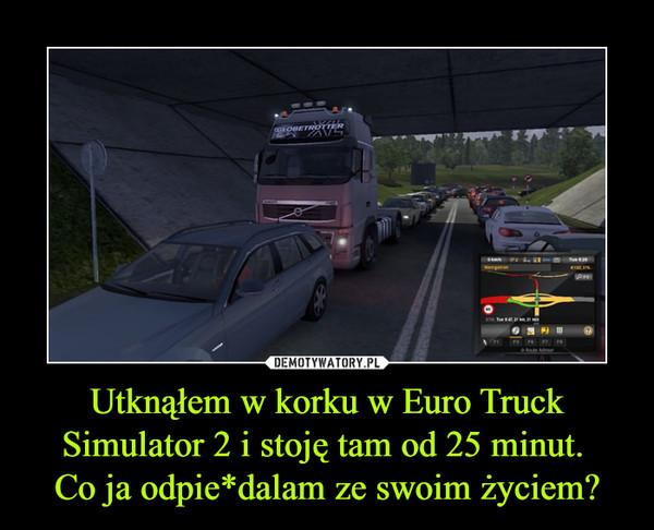 Utknąłem w korku w Euro Truck Simulator 2 i stoję tam od 25 minut. Co ja odpie*dalam ze swoim życiem? –