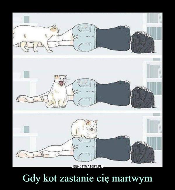 Gdy kot zastanie cię martwym –
