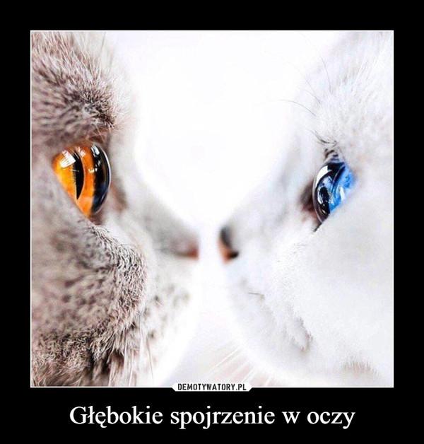 Głębokie spojrzenie w oczy –