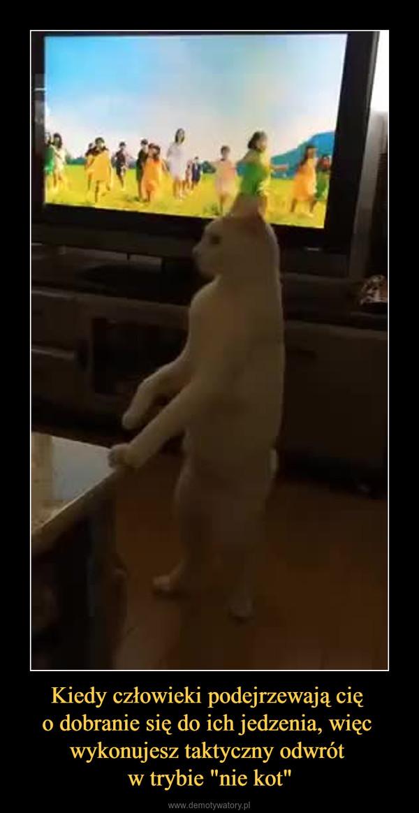 """Kiedy człowieki podejrzewają cię o dobranie się do ich jedzenia, więc wykonujesz taktyczny odwrót w trybie """"nie kot"""" –"""