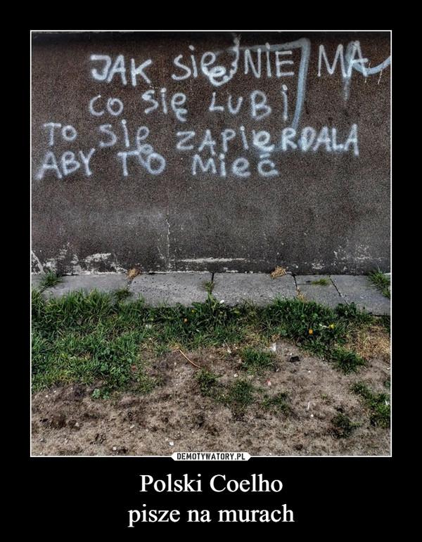 Polski Coelhopisze na murach –