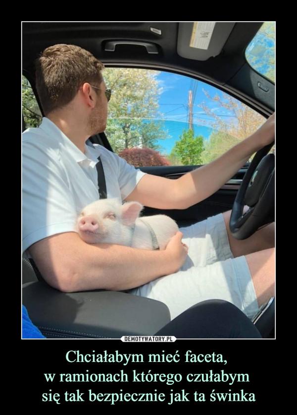 Chciałabym mieć faceta, w ramionach którego czułabym się tak bezpiecznie jak ta świnka –