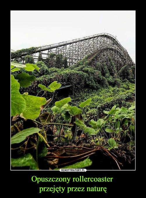 Opuszczony rollercoaster  przejęty przez naturę