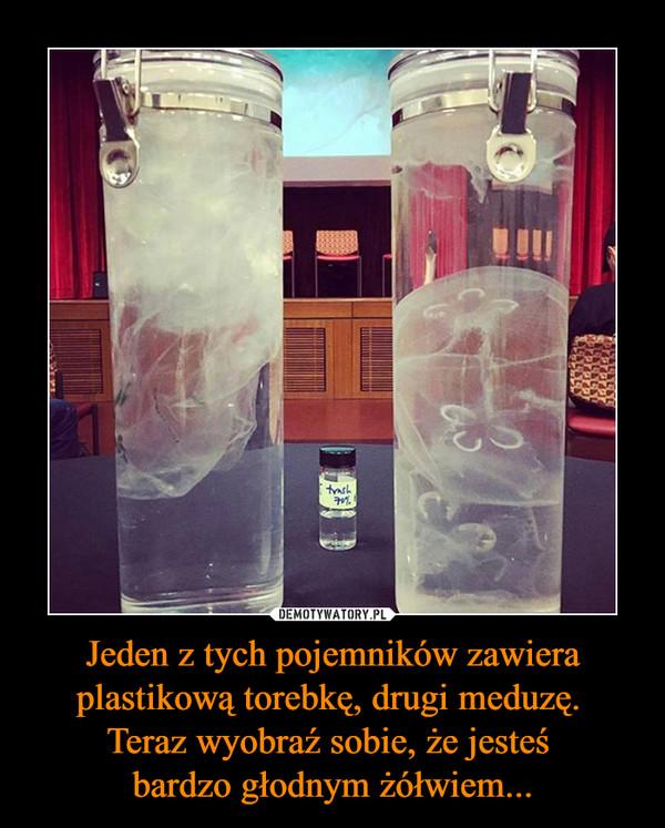 Jeden z tych pojemników zawiera plastikową torebkę, drugi meduzę. Teraz wyobraź sobie, że jesteś bardzo głodnym żółwiem... –