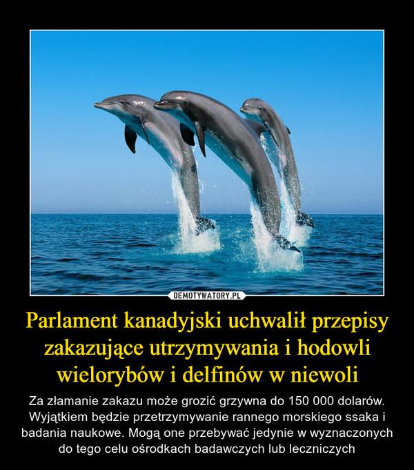 Parlament kanadyjski uchwalił przepisy zakazujące utrzymywania i hodowli wielorybów i delfinów w niewoli – Za złamanie zakazu może grozić grzywna do 150 000 dolarów. Wyjątkiem będzie przetrzymywanie rannego morskiego ssaka i badania naukowe. Mogą one przebywać jedynie w wyznaczonych do tego celu ośrodkach badawczych lub leczniczych