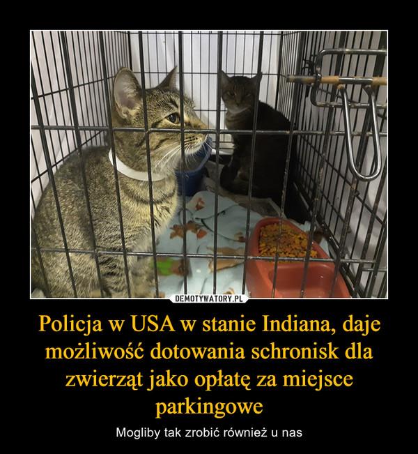 Policja w USA w stanie Indiana, daje możliwość dotowania schronisk dla zwierząt jako opłatę za miejsce parkingowe – Mogliby tak zrobić również u nas