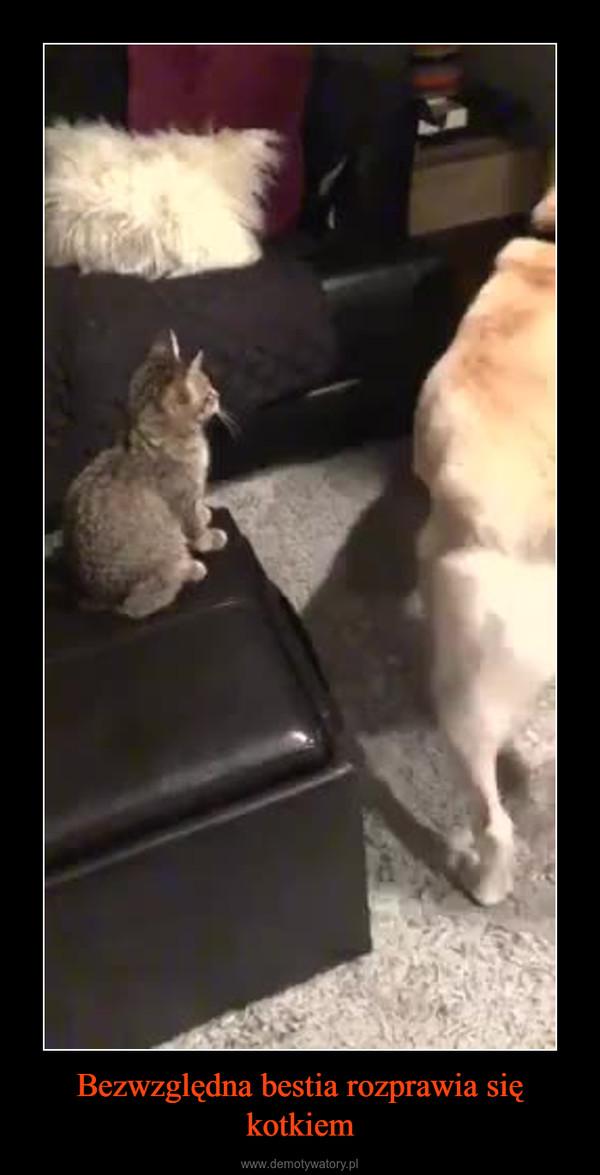 Bezwzględna bestia rozprawia się kotkiem –