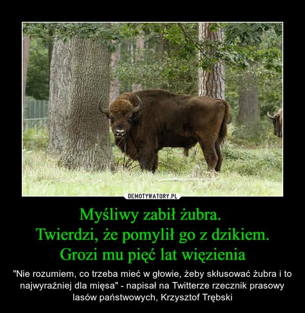 """Myśliwy zabił żubra. Twierdzi, że pomylił go z dzikiem.Grozi mu pięć lat więzienia – """"Nie rozumiem, co trzeba mieć w głowie, żeby skłusować żubra i to najwyraźniej dla mięsa"""" - napisał na Twitterze rzecznik prasowy lasów państwowych, Krzysztof Trębski"""