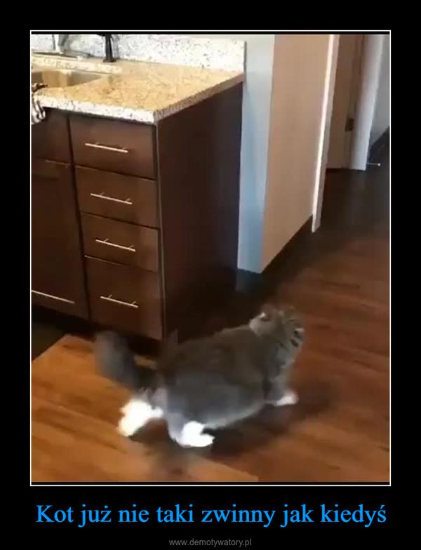 Kot już nie taki zwinny jak kiedyś –