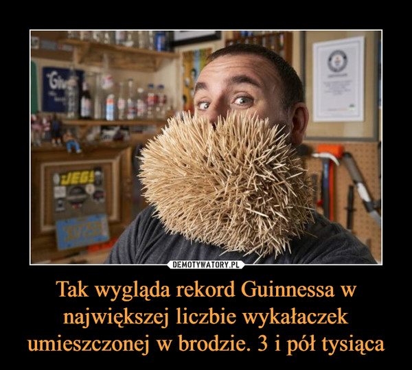 Tak wygląda rekord Guinnessa w największej liczbie wykałaczek umieszczonej w brodzie. 3 i pół tysiąca –