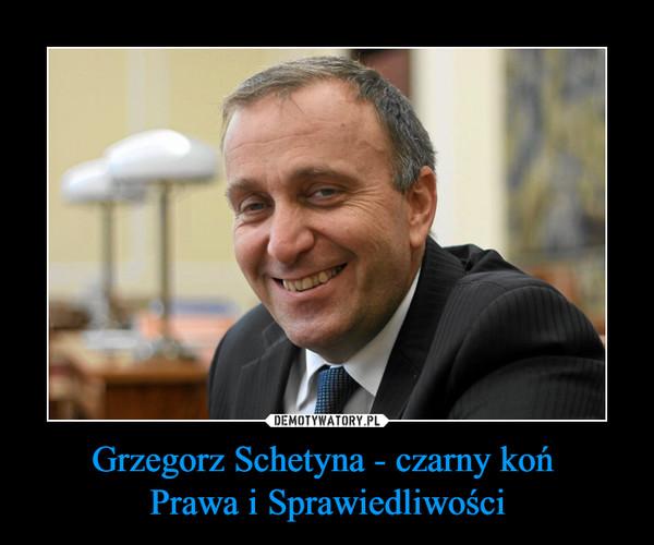 Grzegorz Schetyna - czarny koń Prawa i Sprawiedliwości –