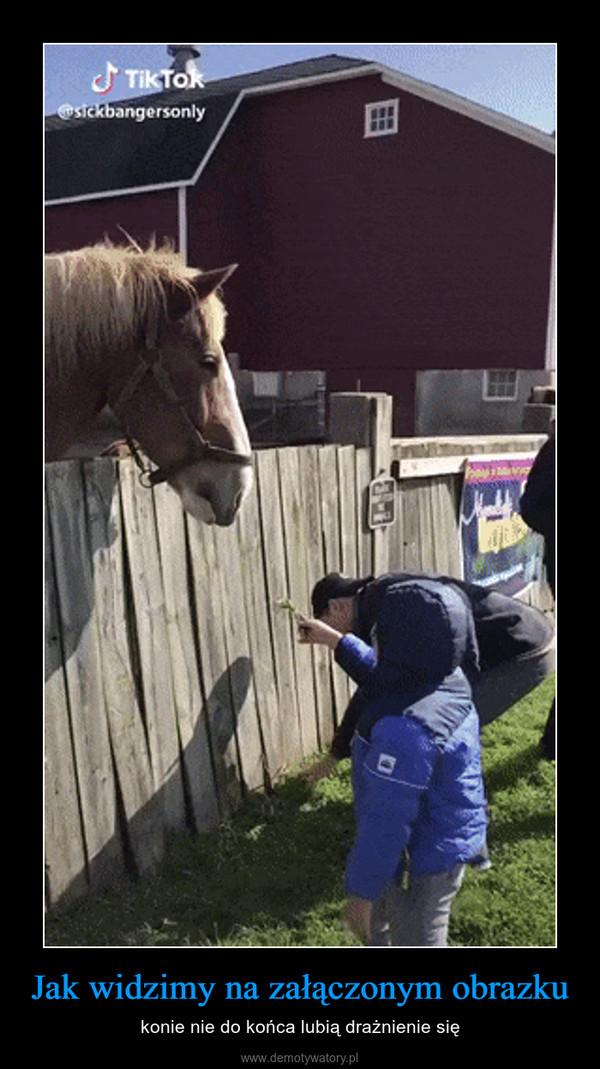 Jak widzimy na załączonym obrazku – konie nie do końca lubią drażnienie się