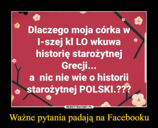 """Ważne pytania padają na Facebooku –  O o Dlaczego moja córka w 1-szej kl LO wkuwa historię starożytnej Grecji... a nic nie wie o historii starożytnej POLSKI.?"""""""