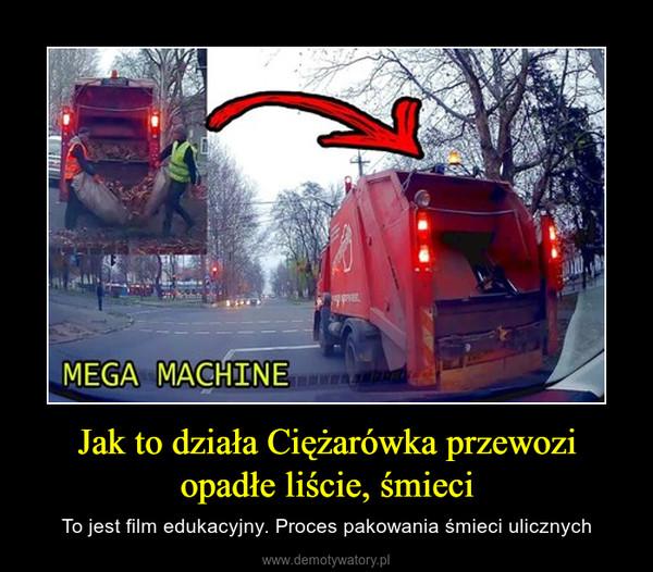 Jak to działa Ciężarówka przewozi opadłe liście, śmieci – To jest film edukacyjny. Proces pakowania śmieci ulicznych