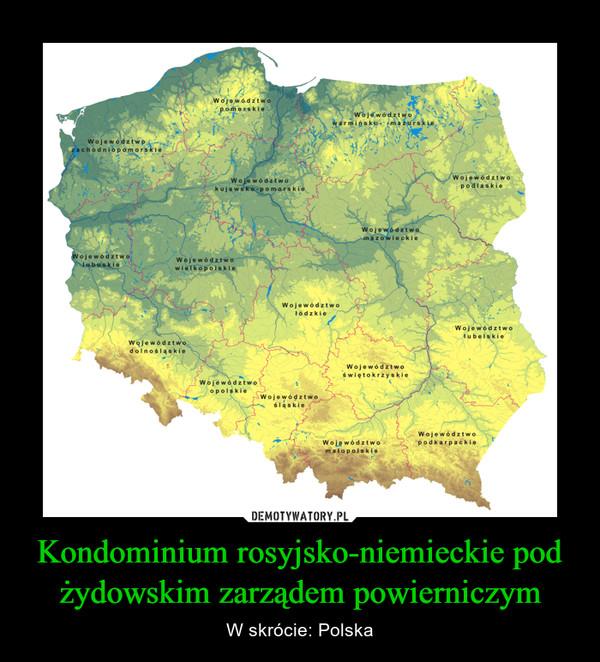 Kondominium rosyjsko-niemieckie pod żydowskim zarządem powierniczym – W skrócie: Polska