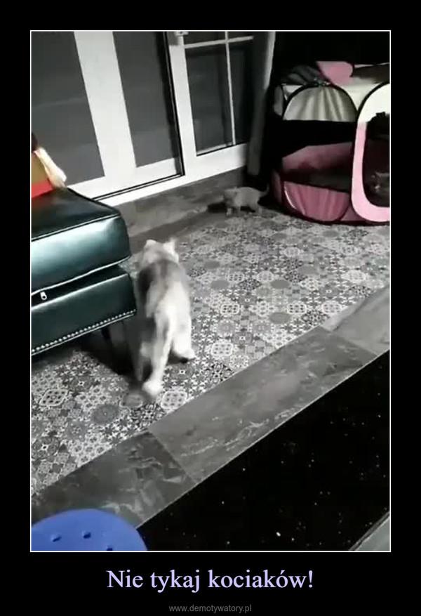 Nie tykaj kociaków! –