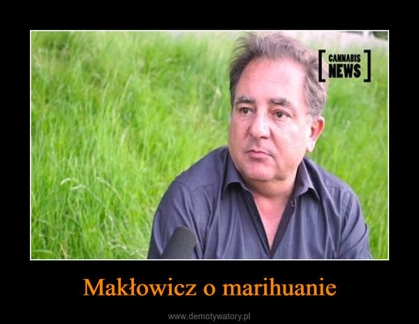 Makłowicz o marihuanie –