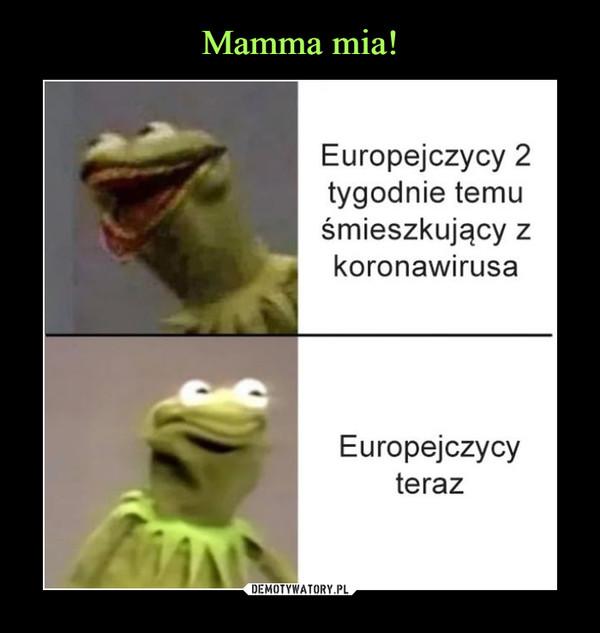 –  Europejczycy 2tygodnie temuśmieszkujący zkoronawirusaEuropejczycyteraz