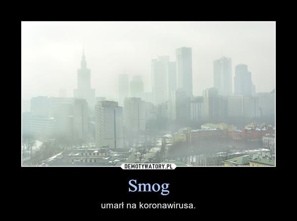 Smog – umarł na koronawirusa.