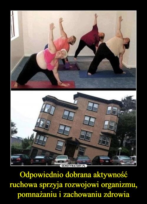 Odpowiednio dobrana aktywność ruchowa sprzyja rozwojowi organizmu, pomnażaniu i zachowaniu zdrowia