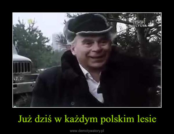Już dziś w każdym polskim lesie –