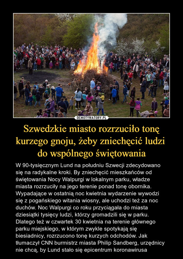 Szwedzkie miasto rozrzuciło tonę kurzego gnoju, żeby zniechęcić ludzi do wspólnego świętowania – W 90-tysięcznym Lund na południu Szwecji zdecydowano się na radykalne kroki. By zniechęcić mieszkańców od świętowania Nocy Walpurgi w lokalnym parku, władze miasta rozrzuciły na jego terenie ponad tonę obornika. Wypadające w ostatnią noc kwietnia wydarzenie wywodzi się z pogańskiego witania wiosny, ale uchodzi też za noc duchów. Noc Walpurgi co roku przyciągała do miasta dziesiątki tysięcy ludzi, którzy gromadzili się w parku. Dlatego też w czwartek 30 kwietnia na terenie głównego parku miejskiego, w którym zwykle spotykają się biesiadnicy, rozrzucono tonę kurzych odchodów. Jak tłumaczył CNN burmistrz miasta Philip Sandberg, urzędnicy nie chcą, by Lund stało się epicentrum koronawirusa