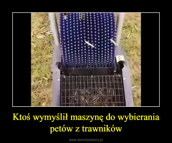Ktoś wymyślił maszynę do wybierania petów z trawników –