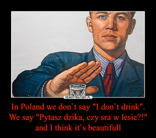 "In Poland we don`t say ""I don`t drink"". We say ""Pytasz dzika, czy sra w lesie?!"" and I think it`s beautifull"