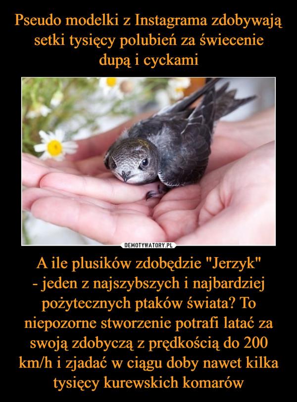 """A ile plusików zdobędzie """"Jerzyk""""- jeden z najszybszych i najbardziej pożytecznych ptaków świata? To niepozorne stworzenie potrafi latać za swoją zdobyczą z prędkością do 200 km/h i zjadać w ciągu doby nawet kilka tysięcy kurewskich komarów –"""