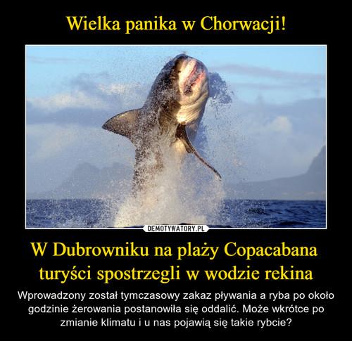 Wielka panika w Chorwacji! W Dubrowniku na plaży Copacabana  turyści spostrzegli w wodzie rekina