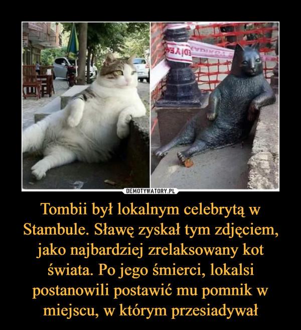 Tombii był lokalnym celebrytą w Stambule. Sławę zyskał tym zdjęciem, jako najbardziej zrelaksowany kot świata. Po jego śmierci, lokalsi postanowili postawić mu pomnik w miejscu, w którym przesiadywał –