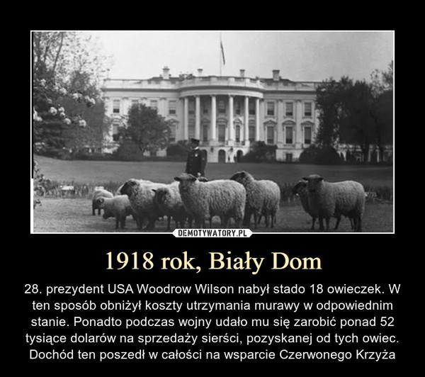 1918 rok, Biały Dom – 28. prezydent USA Woodrow Wilson nabył stado 18 owieczek. W ten sposób obniżył koszty utrzymania murawy w odpowiednim stanie. Ponadto podczas wojny udało mu się zarobić ponad 52 tysiące dolarów na sprzedaży sierści, pozyskanej od tych owiec. Dochód ten poszedł w całości na wsparcie Czerwonego Krzyża