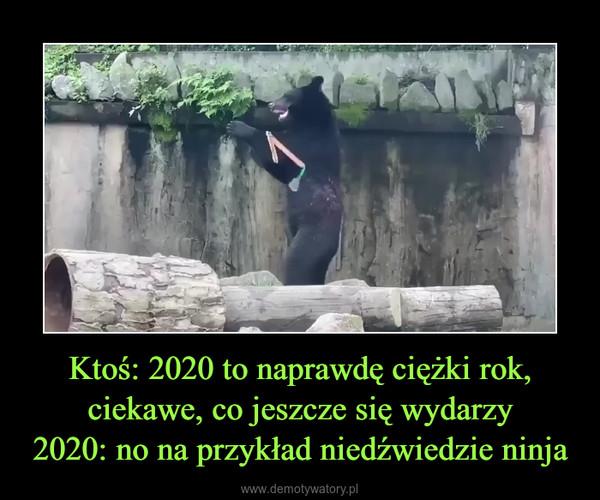 Ktoś: 2020 to naprawdę ciężki rok, ciekawe, co jeszcze się wydarzy2020: no na przykład niedźwiedzie ninja –