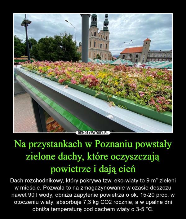 Na przystankach w Poznaniu powstały zielone dachy, które oczyszczają powietrze i dają cień – Dach rozchodnikowy, który pokrywa tzw. eko-wiaty to 9 m² zieleni w mieście. Pozwala to na zmagazynowanie w czasie deszczu nawet 90 l wody, obniża zapylenie powietrza o ok. 15-20 proc. w otoczeniu wiaty, absorbuje 7,3 kg CO2 rocznie, a w upalne dni obniża temperaturę pod dachem wiaty o 3-5 °C.