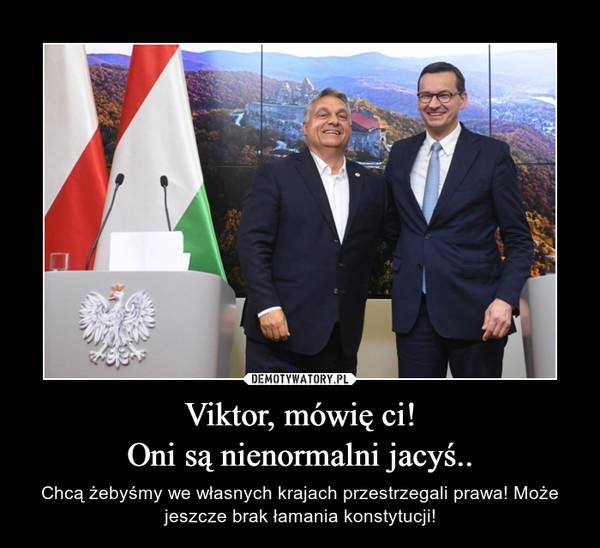 Viktor, mówię ci!Oni są nienormalni jacyś.. – Chcą żebyśmy we własnych krajach przestrzegali prawa! Może jeszcze brak łamania konstytucji!