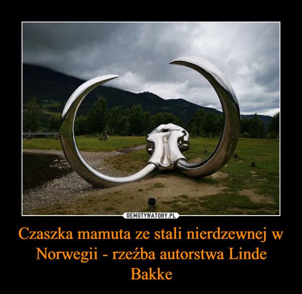 Czaszka mamuta ze stali nierdzewnej w Norwegii - rzeźba autorstwa Linde Bakke