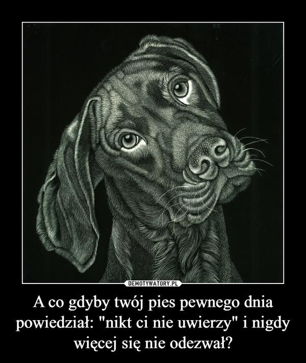 """A co gdyby twój pies pewnego dnia powiedział: """"nikt ci nie uwierzy"""" i nigdy więcej się nie odezwał? –"""