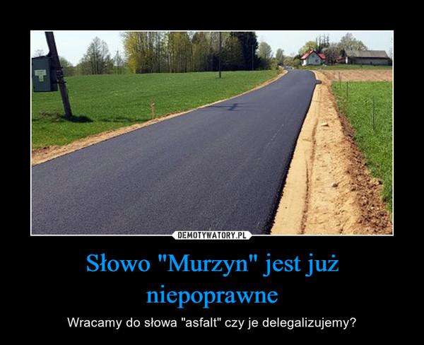 """Słowo """"Murzyn"""" jest już niepoprawne – Wracamy do słowa """"asfalt"""" czy je delegalizujemy?"""