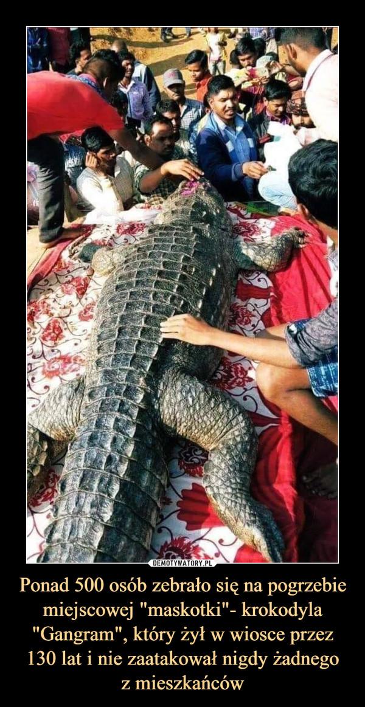 """Ponad 500 osób zebrało się na pogrzebie miejscowej """"maskotki""""- krokodyla """"Gangram"""", który żył w wiosce przez 130 lat i nie zaatakował nigdy żadnegoz mieszkańców –"""