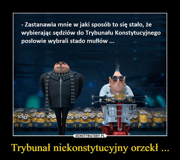 Trybunał niekonstytucyjny orzekł ... –