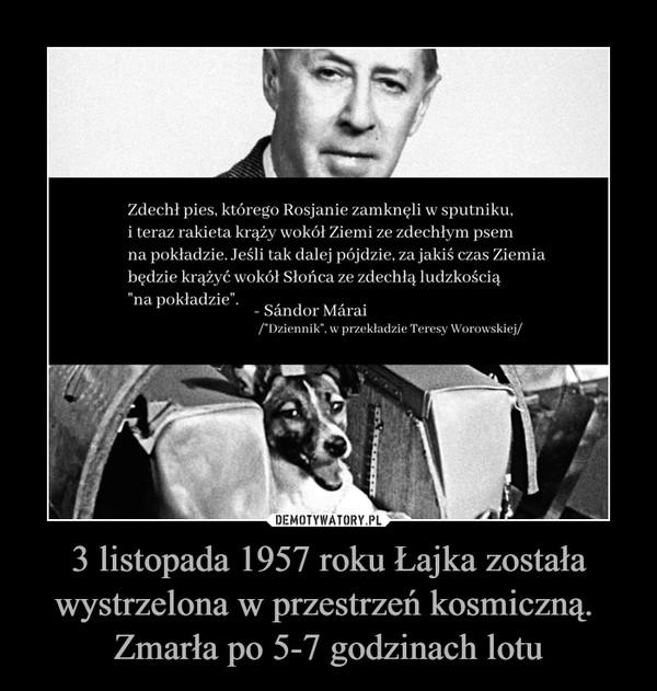 3 listopada 1957 roku Łajka została wystrzelona w przestrzeń kosmiczną. Zmarła po 5-7 godzinach lotu –