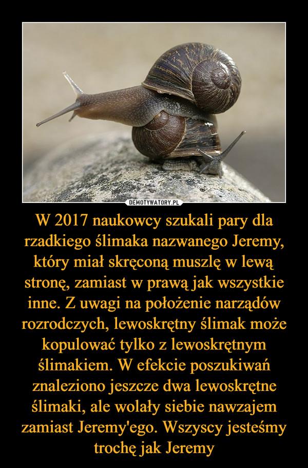 W 2017 naukowcy szukali pary dla rzadkiego ślimaka nazwanego Jeremy, który miał skręconą muszlę w lewą stronę, zamiast w prawą jak wszystkie inne. Z uwagi na położenie narządów rozrodczych, lewoskrętny ślimak może kopulować tylko z lewoskrętnym ślimakiem. W efekcie poszukiwań znaleziono jeszcze dwa lewoskrętne ślimaki, ale wolały siebie nawzajem zamiast Jeremy'ego. Wszyscy jesteśmy trochę jak Jeremy –