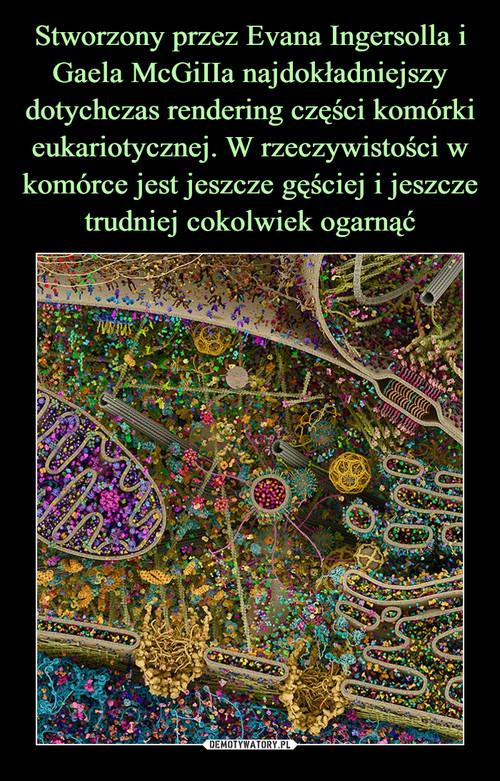 Stworzony przez Evana Ingersolla i Gaela McGiIIa najdokładniejszy dotychczas rendering części komórki eukariotycznej. W rzeczywistości w komórce jest jeszcze gęściej i jeszcze trudniej cokolwiek ogarnąć