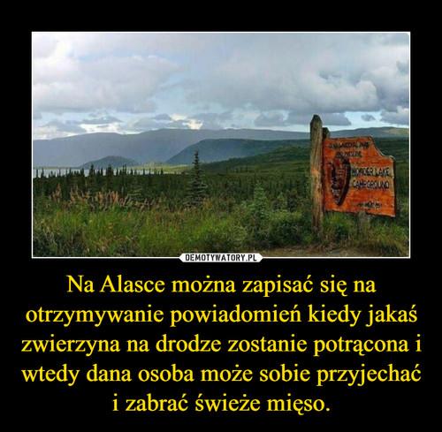 Na Alasce można zapisać się na otrzymywanie powiadomień kiedy jakaś zwierzyna na drodze zostanie potrącona i wtedy dana osoba może sobie przyjechać i zabrać świeże mięso.