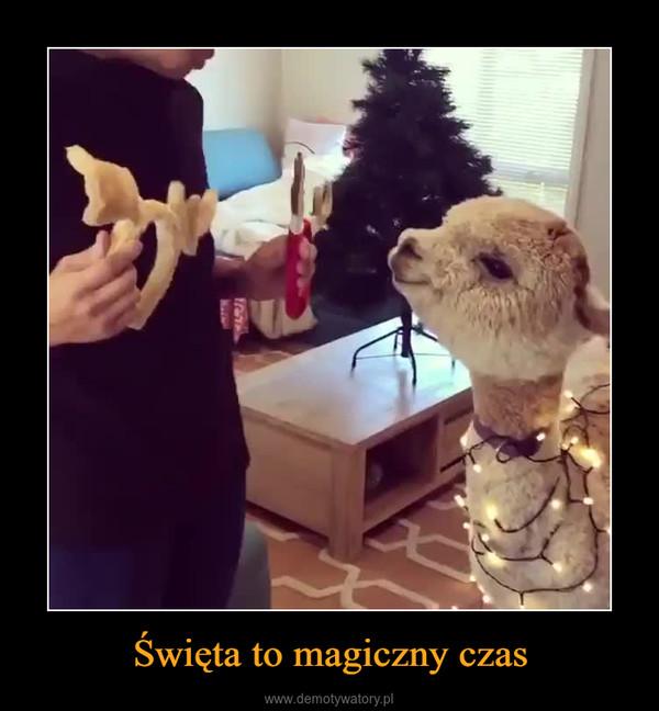 Święta to magiczny czas –